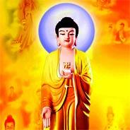 Gặp Được Kinh Vô Lượng Thọ & Pháp Môn Niệm Phật Là Người Đã Cúng Dường Vô Số Chư Phật Quá Khứ