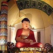 Hai Điều Kiện Cần Thiết Cho Người Niệm Phật Cầu Vãng Sanh Tịnh Độ