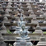 Hãy Niệm Phật Để Nuôi Dưỡng Pháp Thân Huệ Mạng Của Mình