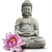 Khinh Pháp Tịnh Độ Chính Là Khinh Chê Luôn Cả Chư Phật