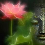 Làm Ác Nhờ Niệm Phật Được Vãng Sanh