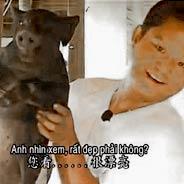 Một Chủ Trại Heo Cho Heo Ăn Chay & Không Bán Heo [Video]