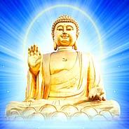 Người Niệm Phật Chớ Nên Mong Vãng Sanh Đúng Kỳ Hạn Mà Chỉ Nên Mong Vãng Sanh Ngay Trong Hiện Đời