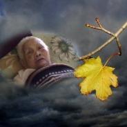Nhờ Con Thành Tâm Mẹ Từ Địa Ngục Trở Về Niệm Phật Được Vãng Sanh