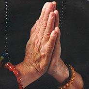 Nhờ Niệm Phật Con Trai Một Gia Đình Đồ Tể Vãng Sanh Và Cha Mẹ Đều Đổi Nghề