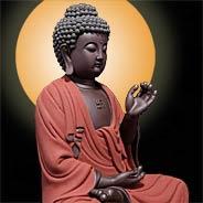 Thân Quang Của Phật A Di Đà Chiếu Khắp Nhưng Tâm Quang Của Phật Chỉ Nhiếp Thủ Người Niệm Phật
