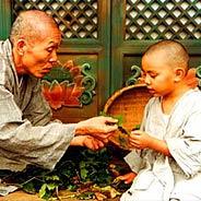 Thầy Dạy Tôi Niệm Phật