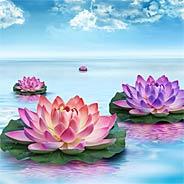 Từ Địa Ngục Trở Về Nhờ Tụng Kinh Niệm Phật Vãng Sanh Thượng Phẩm