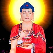 Vì Sao Chúng Ta Không Thường Niệm Phật Thích Ca Lại Niệm Phật A Di Đà?
