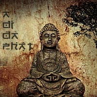Vị Sư 68 Tuổi Mới Xuất Gia Mỗi Khi Niệm Phật Niệm Lớn Tiếng Thường Bị Người Quở Mắng Mà Chẳng Hay [Video]