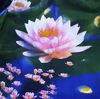 Niệm Phật Cầu Sanh Tịnh Độ Là Tâm Nguyện Của 10 Phương Chư Phật Như Lai [Video]