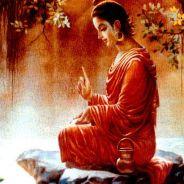 Bài Học Quý Giá Từ Những Tấm Gương Niệm Phật Không Vãng Sanh