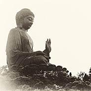 Người Có Thể Niệm Phật Trong Cảnh Khổ Là Người Biết Lấy Thống Khổ Chuyển Thành Hoa Sen Rực Rỡ