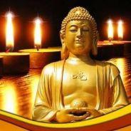 Cha Mẹ Quá Vãng Được Vãng Sanh Nhờ Công Đức Niệm Phật Hồi Hướng Của Con