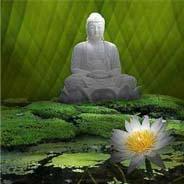 Hoa Khai Kiến Phật Ngộ Vô Sanh