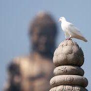 Khi Tâm Bất Thiện Phát Khởi Hãy Mau Lớn Tiếng Niệm Phật