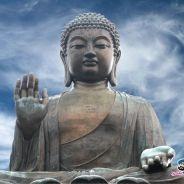 Một Tấm Gương Sáng Về Lòng Tin Kiên Định Vào Đại Nguyện Của Phật A Di Đà