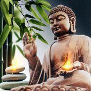 Người Ăn Chay Nên Niệm Phật & Người Ăn Mặn Nên Giữ Giới Sát Để Tiêu Trừ Nghiệp Chướng