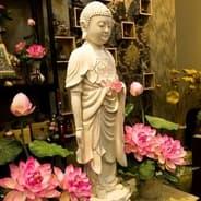 Người Niệm Phật Phải Xa Lìa Những Điều Phi Phạm Hạnh Mới Vãng Sanh