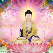 Nhờ Anh Trai Khai Thị Và Trợ Niệm Người Em Được Phật Báo Trước Giờ Vãng Sanh