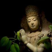 Niệm Phật Có Tâm Như Mẹ Chôn Con Như Rồng Mất Châu Thì Chẳng Mong Nhất Tâm Mà Tâm Tự Nhất
